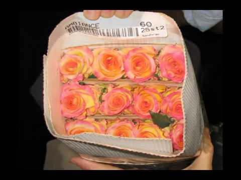 Church Wedding Decorations - Processing Bulk Wedding Flowers