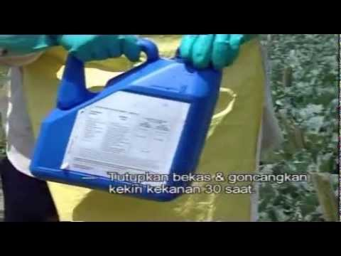 Triple Rinse Procedure before used pesticides plastic containers being collected for recycle