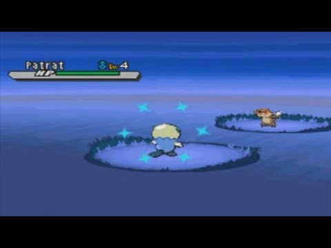 LIVE! Shiny Oshawott in W2/B2 after only 584 SR's!!