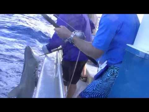 fishing trip Lord Howe Island