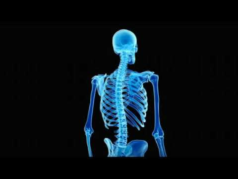 Cure Scoliosis + Re-Lengthen The Spine (Grow Taller) Subliminal Affirmations