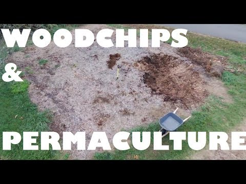 GIANT 2 Year Old Pile Of WOODCHIPS !!! FOOD FOREST Winter Preparation