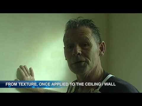 Painting Textured / Plastered Walls and Ceilings Primary Coat