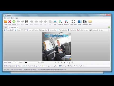 FileViewPro Cow Review