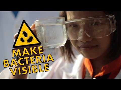 Test Your Water and Make Bacteria Visible | Full Proof