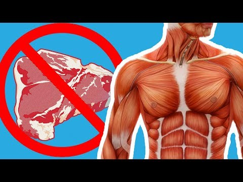 Changes That Will Occur To Your Body If You Do Not Eat MEAT