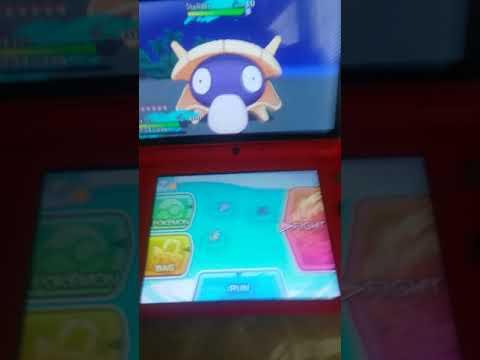 Shiny Shellder 104 SOS Encounters | Read The Description | Pokemon Sun & Moon