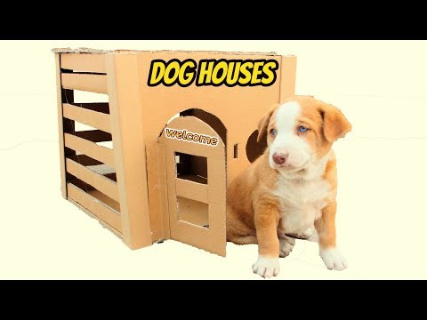 How to Make Amazing  Dog House With Cardboard