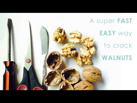Super fast easy ways to crack walnuts (3 tools)