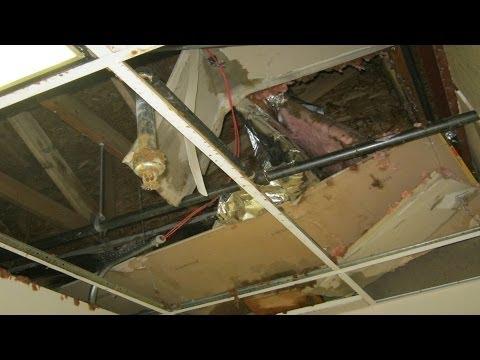 Denver, Colorado Business Survives a Major Flood