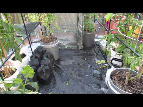 Part 1 of 5: Securing and A Passive Heat Source for Garden Greenhouses - The Rusted Garden 2013
