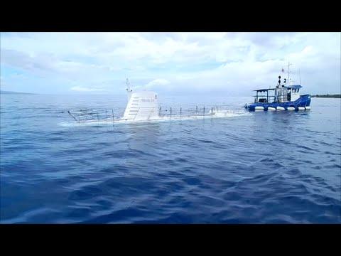 Atlantis Submarine Dive In Maui, Hawaii