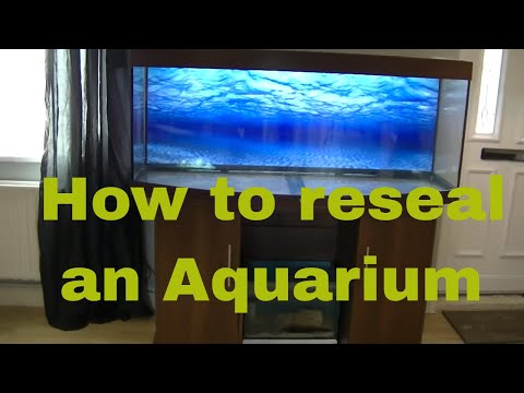 How to reseal a Leaking fish tank!!