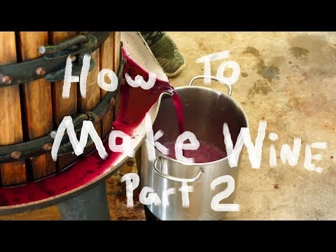 How To Make Wine Part 2