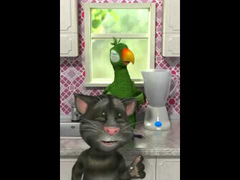 Talking pierre parrot nyeri nyeri teuing ema...