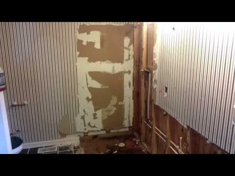 Bathroom remodel after finding black mold and termites (Day 1)