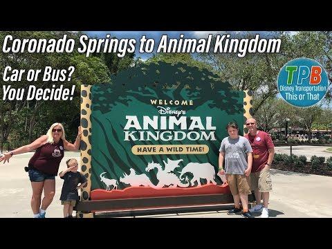 Disney Transportation This or That: Coronado Springs to Animal Kingdom