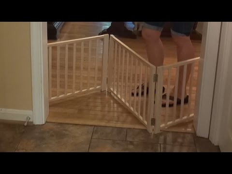 Four Paws Freestanding Walkover PET GATE Review 🐶