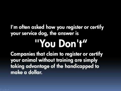 How to Certify a Service Dog or How to Scam the Disabled