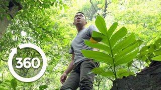 Vietnam's Paranormal Portal | Hanoi, Vietnam 360 VR Video | Discovery TRVLR