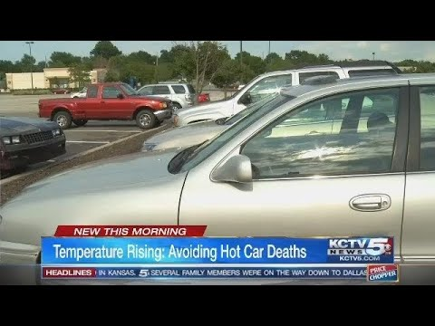 As heat wave hits Kansas City area, experts warn against leaving kids in cars