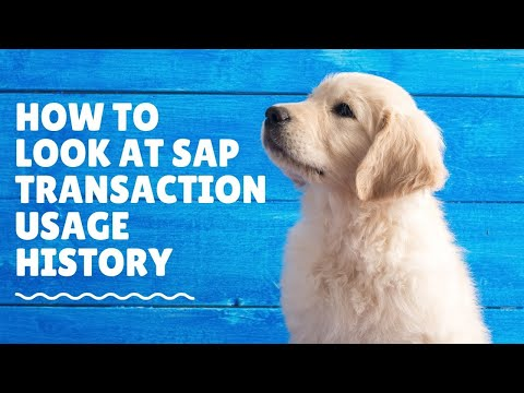 SAP Training How to look user history of transactions used in SAP System