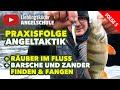 Angeltaktik Erfolgreich Auf Barsche Und Zander Angeln Staffel 1 Folge 5