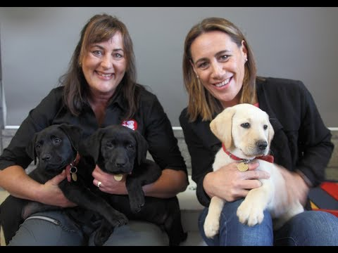 Jenny May visits the NZ Blind Foundation Guide Dogs Breeding & Training Centre