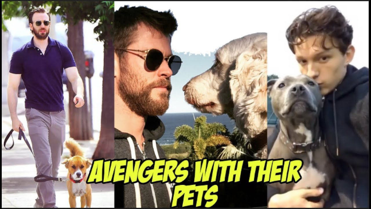 Avengers: Endgame Cast With Their Pets -  Cute and adorable Animals with The MCU Cast