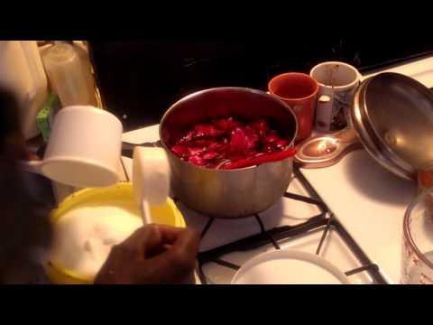 making rose petal syrup