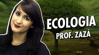 Conceitos básicos da Ecologia - Biologia - Prof. Zazá
