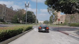 Ucla And Westwood Village, L.a.