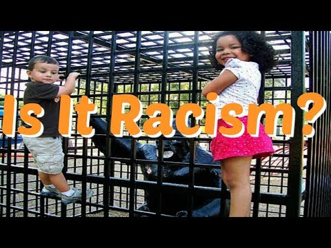 Why Is Everything Racist These Days? | SJWs Gone Too Far
