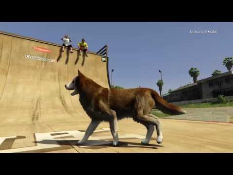 Pro GTA Animal Physics