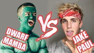 Dwarf Mamba Vines VS Logan Paul