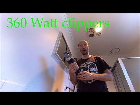 360 Watt clippers is how you should shave