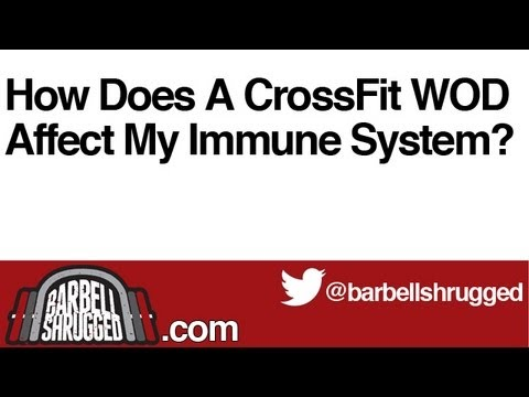 How Does A CrossFit WOD Affect My Immune System? -  The Daily BS 120