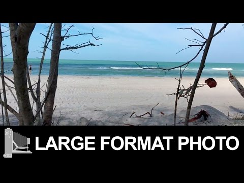 Stump Pass Beach State Park – Large Format Film Photography