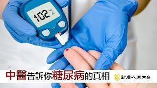 認識『糖尿病』 正確治療及預防觀念你一定要知  談古論今話中醫(455)