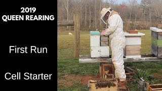 Download Queen Rearing: Starting the First Batch of 2019 Video