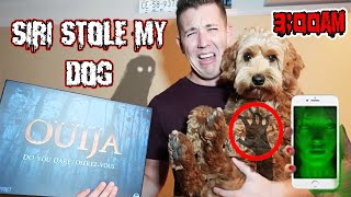 (SIRI STOLE MY DOG!?) 3AM OUIJA BOARD CHALLENGE GONE WRONG!! DONT TALK TO SIRI AT 3AM | (HELP ME!?)