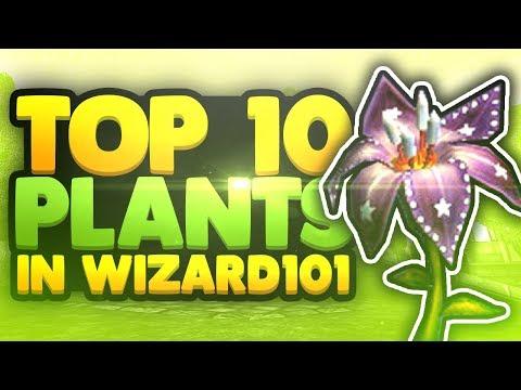 Top 10 Plants in Wizard101!