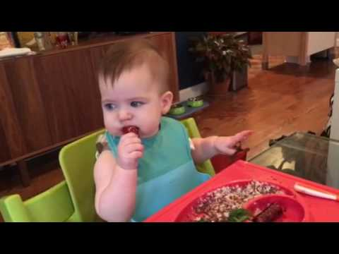 Baby led weaning - bison hot dog