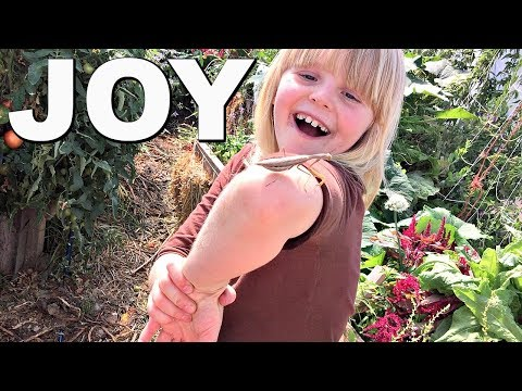 Grow the Family Garden With CARDBOARD