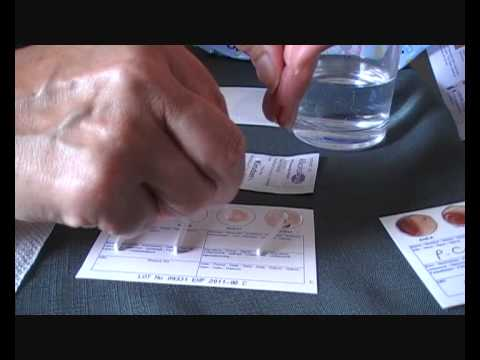 Eat Right For Your Type, Blood Type Home Test Kit Demo for Pippa's Therapy Clinic UK