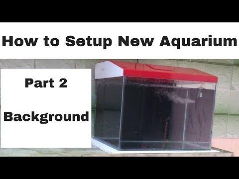 How to setup new aquarium   Part 2   Background