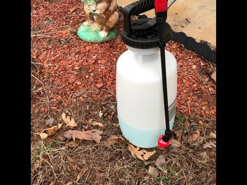 DIY All Natural Weed Bug Killer The Best On The Planet