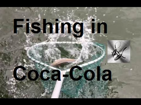 Fishing in Coca Cola | The Hook and The Cook