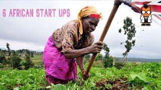 6 African Start Ups Redefining Agirculture