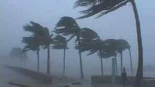 Hurricane Wilma Video - Miami Beach, Florida